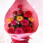 Rose Radiance 1 dozen
