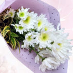Winter Pleasures bouquet 1 dozen
